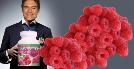 dr oz raspberry ketone