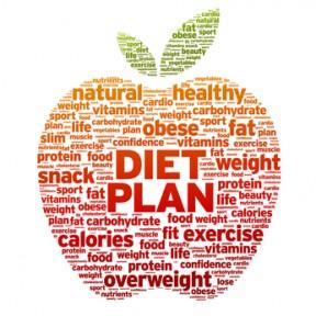 paleo diet newsletter